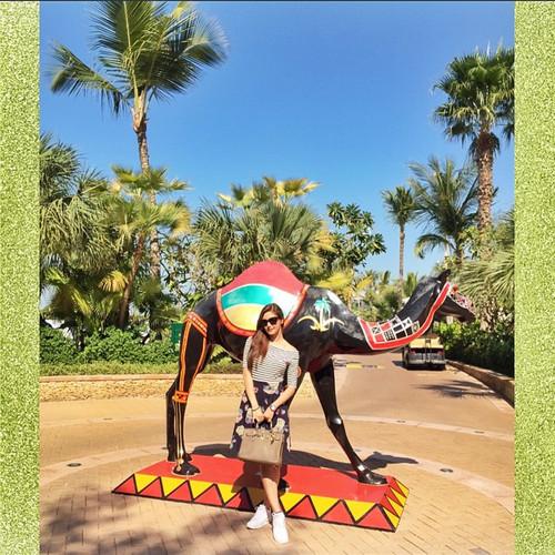 PHOTOS: Kim and Paulo's exciting Dubai escapade
